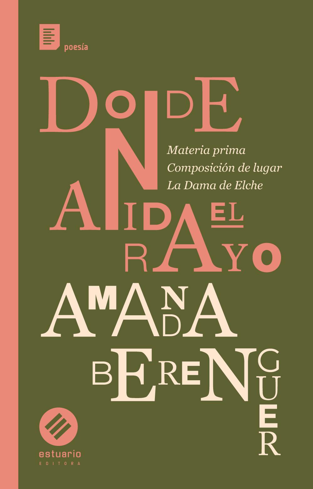 DONDE-ANIDA-EL-RAYO-tapa